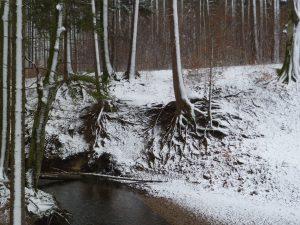 Winterzauber und Stille…